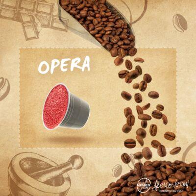 Alberto Verani Opera